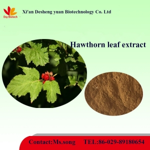 Hawthorn leaf extract.